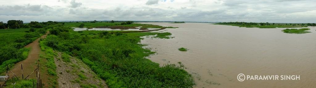 The Lake at Nandur Madhyameshar. In the monsoons.