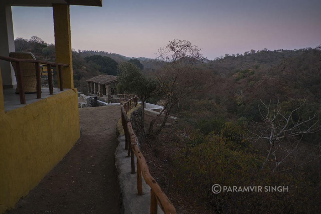 Todgarh India  city photos : The Todgarh Wildlife Sanctuary forest rest house in the early morning ...