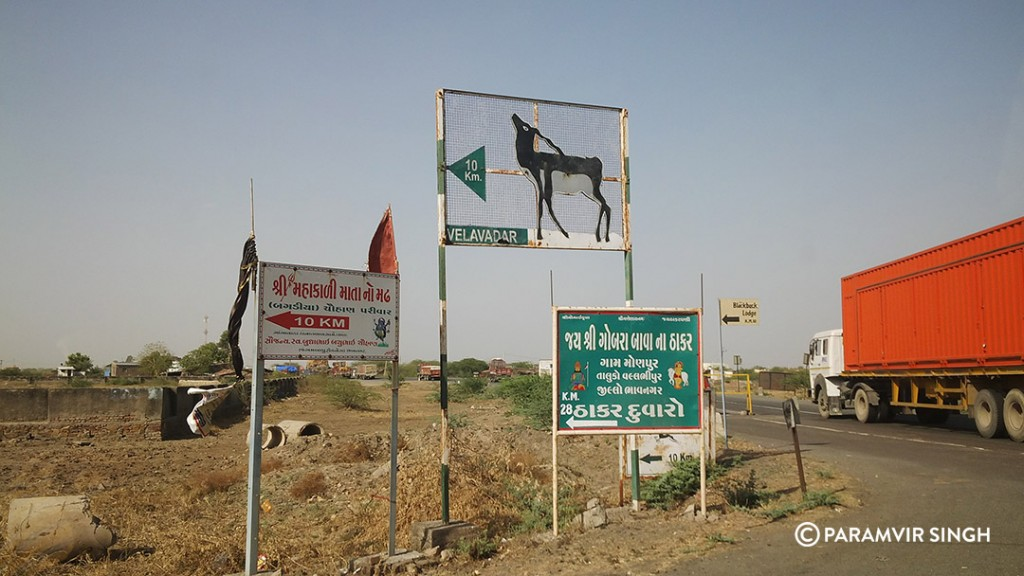 Approaching Blackbuck National Park, Velavadar.