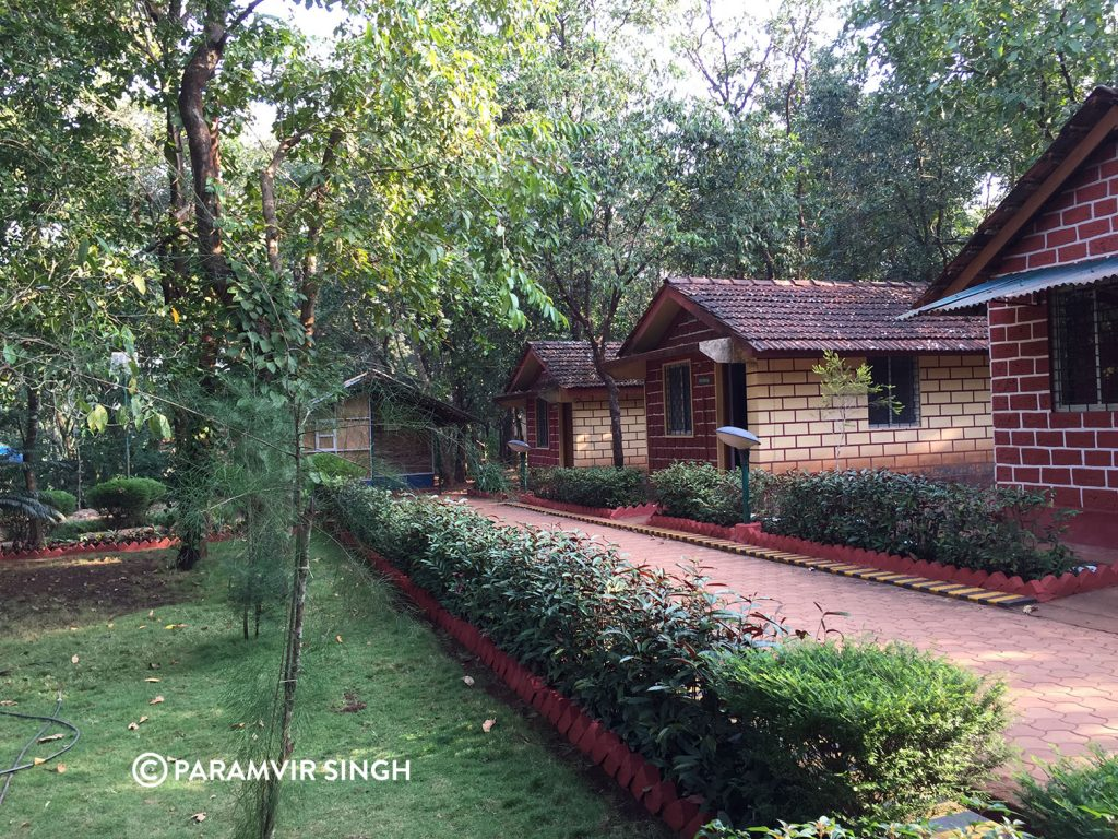 Forest Cottages, Cotigao Wildlife Sanctuary