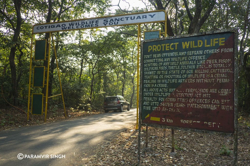 Cotigao Forest Main Gate