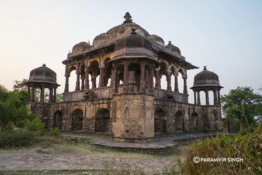 Pillar Chatri Ranthambhore Fort