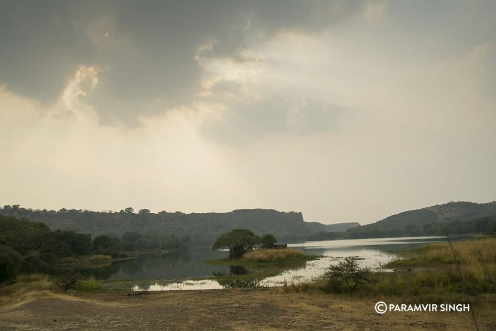 Padam Talao at Ranthambhore National Park