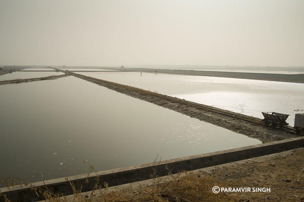 Sambar Lake