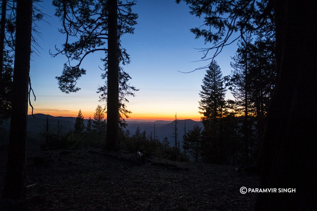 Sequoia National park sunset.