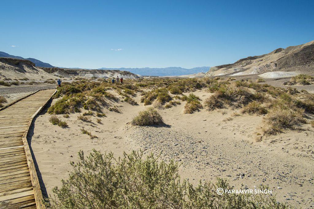 Towards Amargosa River in Death valley National Park