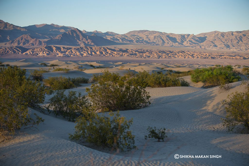 Mesquite Flats in Death Valley National Park