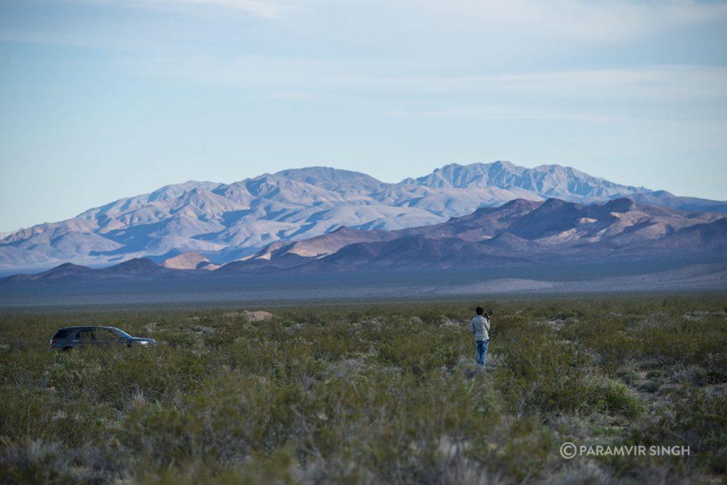 Introspection in Nevada.