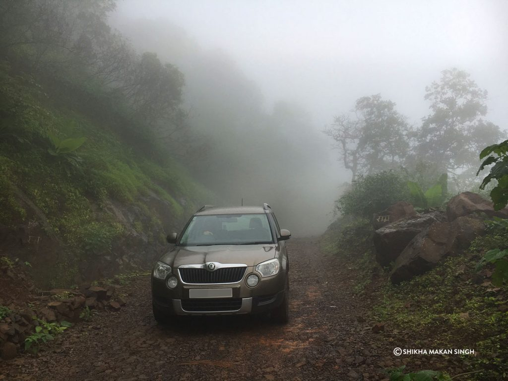Misty driving into Tungareshwar Wildlife Sanctuary