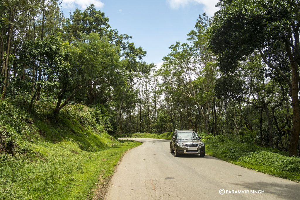 Chikmagalur Driving