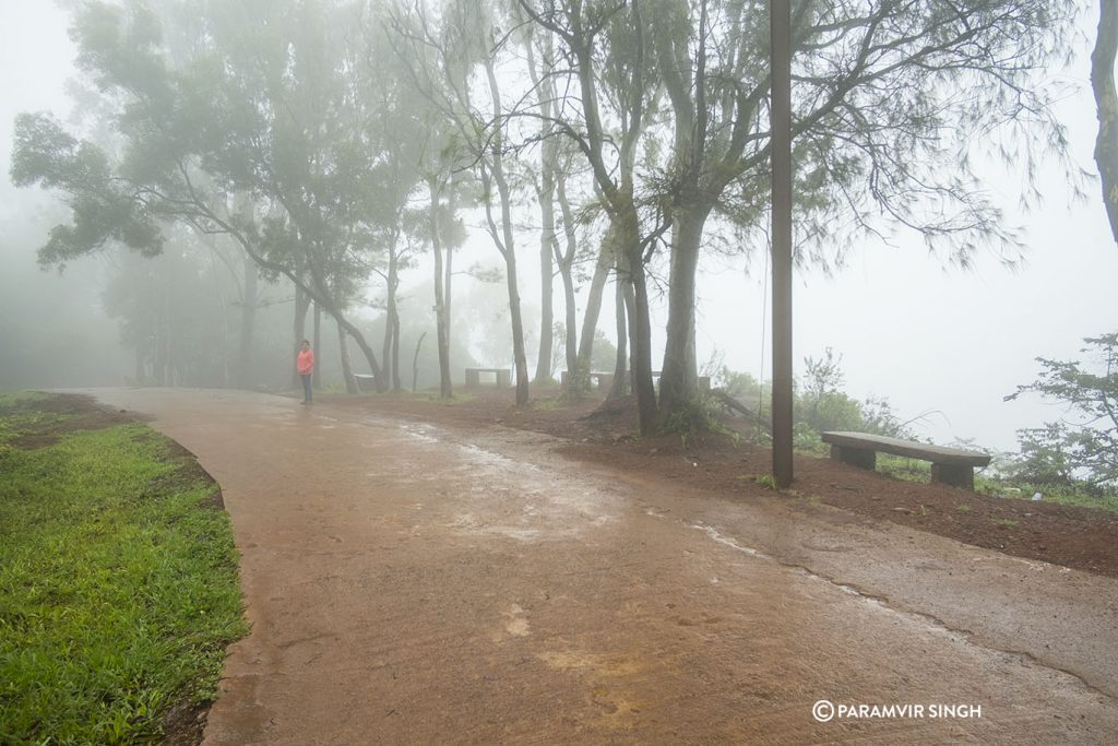 Misty in Chikmagalur