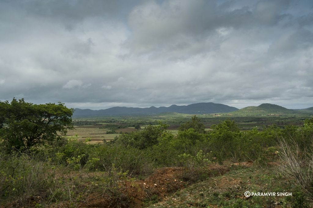 Chikmagalur vista in monsoon