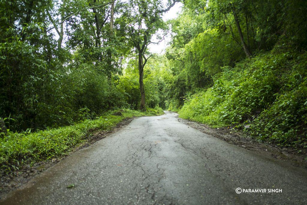 Road to Bhadra