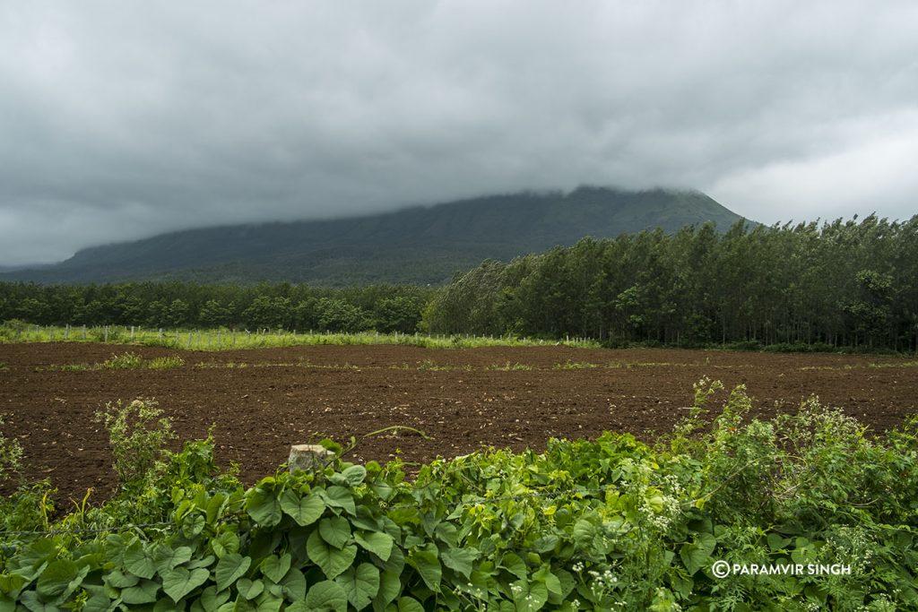 Chikmagalur farm