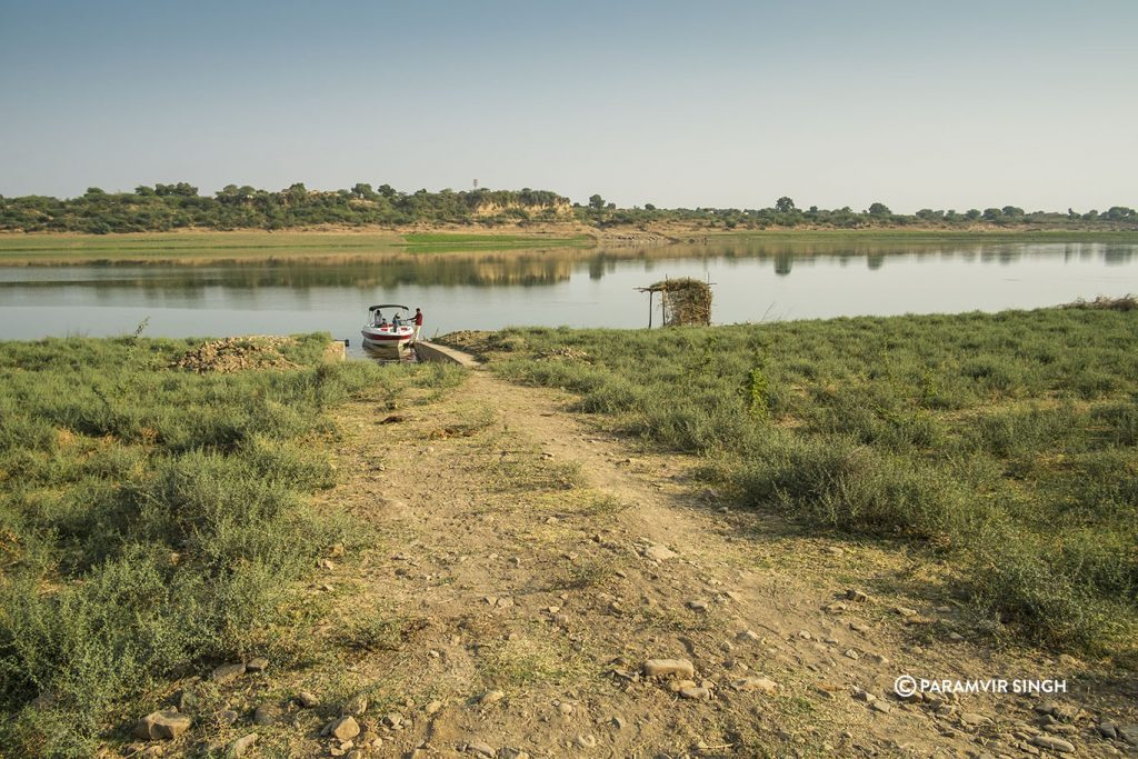 Starting the Chambal River Safari