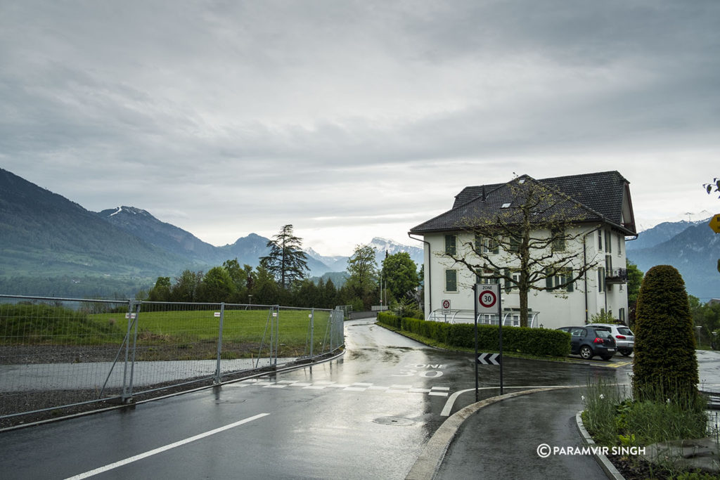 Lucerne on May morning rain.