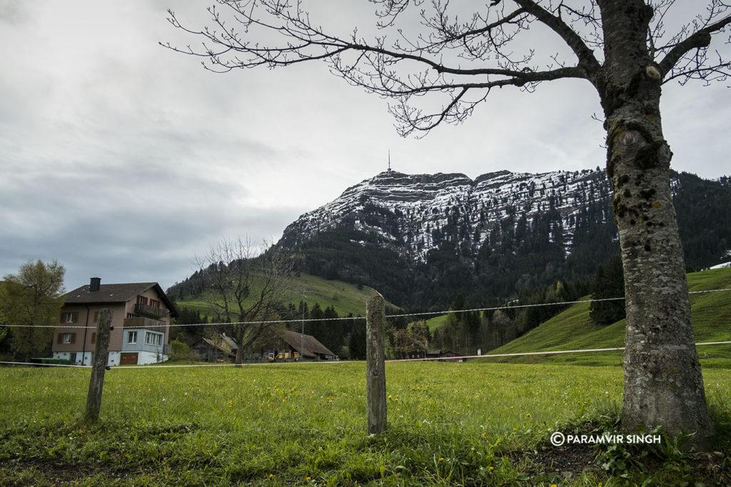 Meadows around Mount Rigi, Lucerne