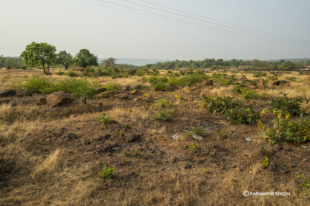 Ratnagiri Landscape