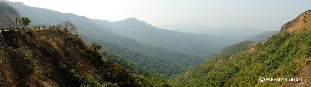 Panorama shot of forests near Ratnagiri