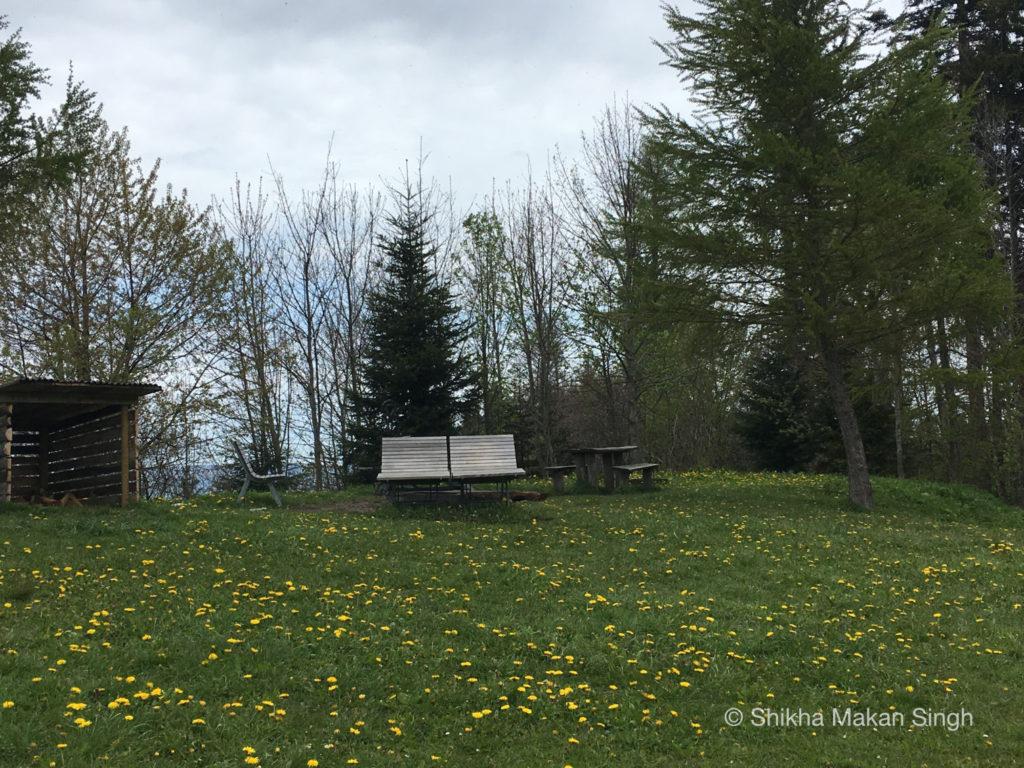 Park bench in Lucerne