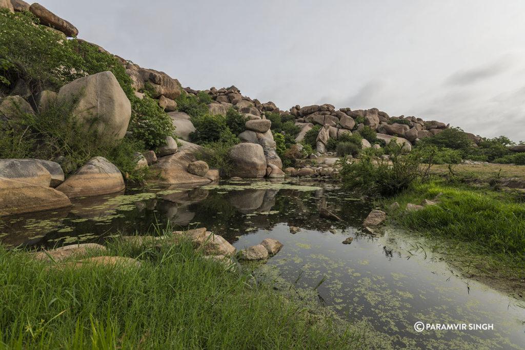 Hampiu Pond