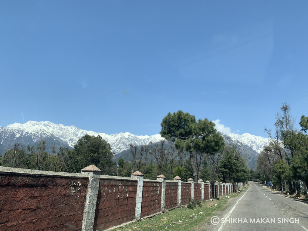 Palampur Agriculture University